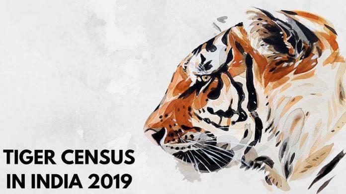 tiger-census-in-india